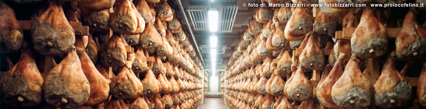 food-valley-prolocofelino-00005